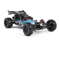 Raider 2WD Mega Brushed 1/10 RTR - 2014